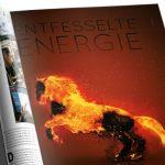 20Fuenfzehn - Portfolio - Lignite Energy - Feuertiere - Detail 002