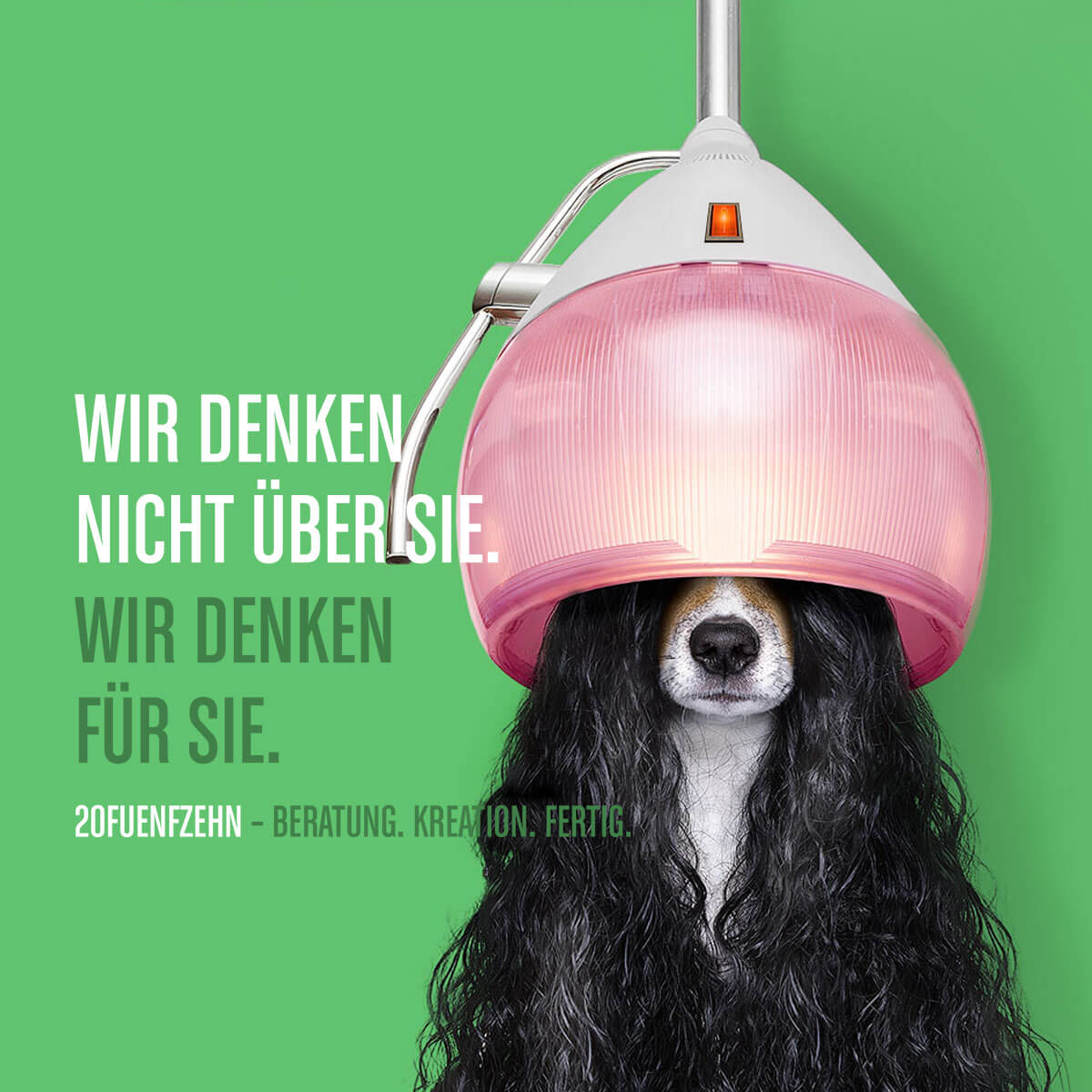 20FUENFZEHN Kreativagentur - Slider Motiv - Hund - Mobile
